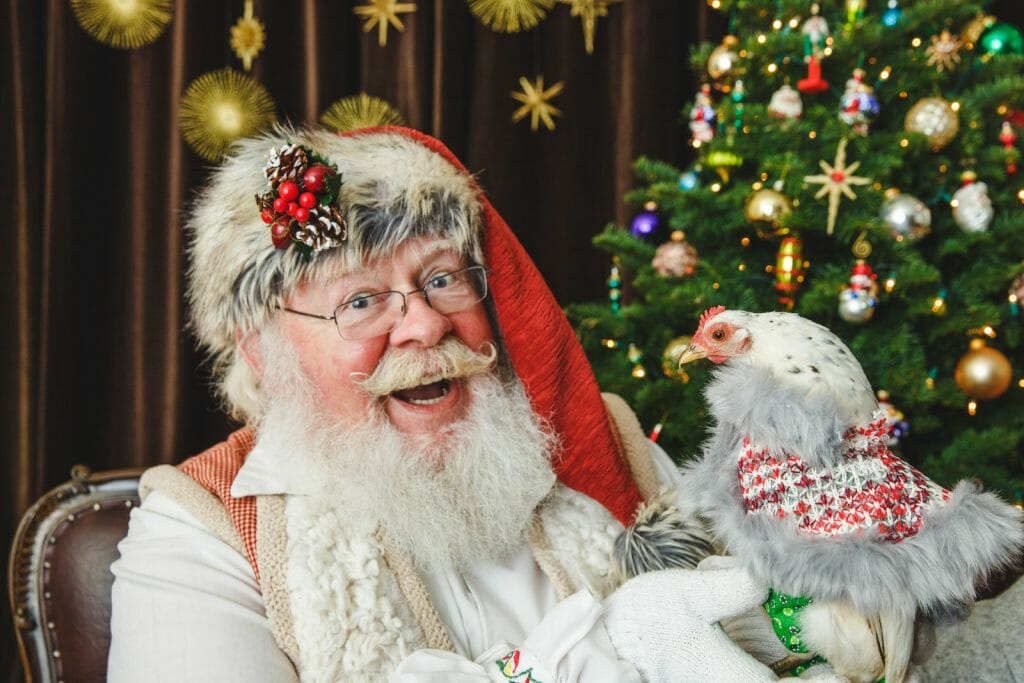 santa photos with pets