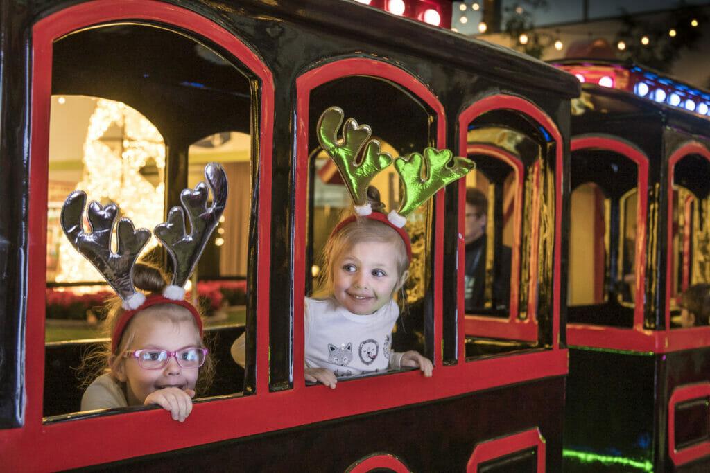 louis the locomotive seattle